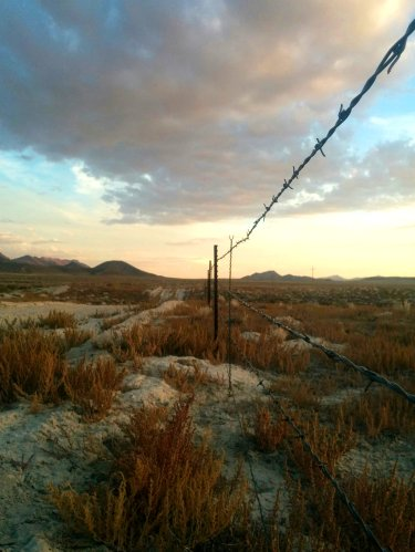 Barbed wire fence in the nevada desert at sunset