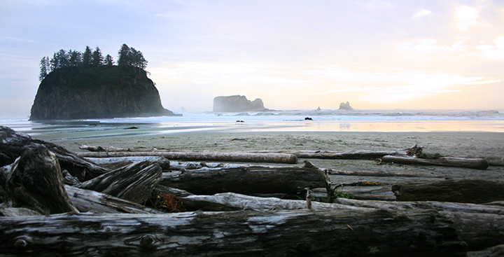 la push beach sunset