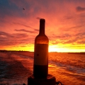 Sunset and a bottle of wine NYC