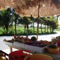 Fruit stand puerto rico